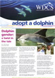 Writer and editor - Whale and Dolphin Society Newsletter